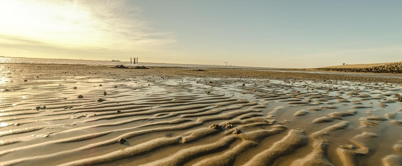 Die Logo Werbung aus Emden -  <br />das ist Ihre Werbung am Meer!